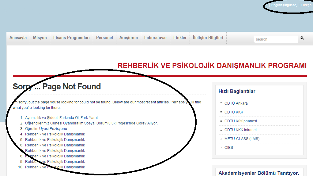 turkish-home_page.png