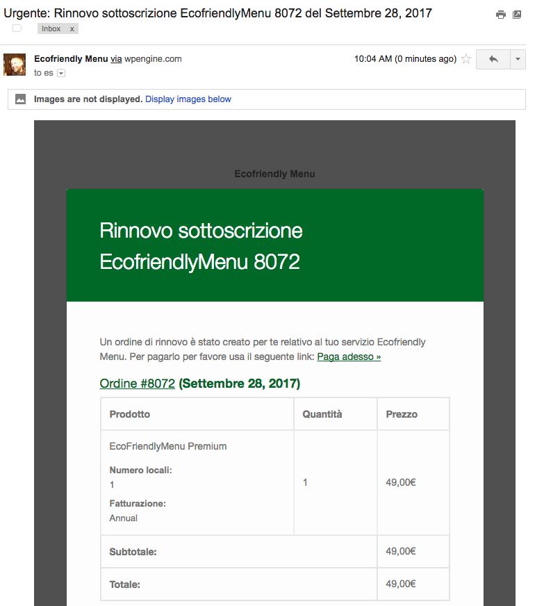 8042-email-payment.png