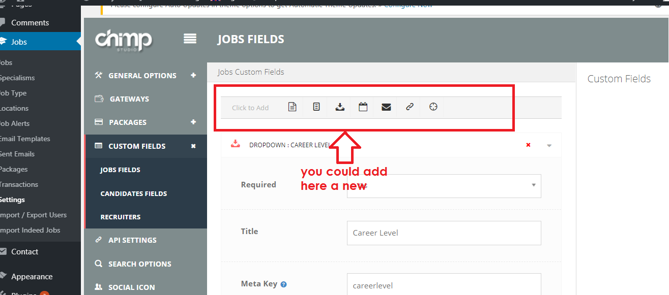 add new value custom fields.png