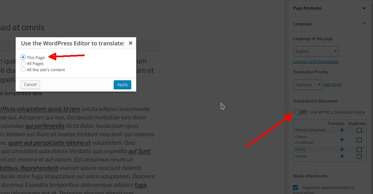 Translating divi, the library and global items - WPML