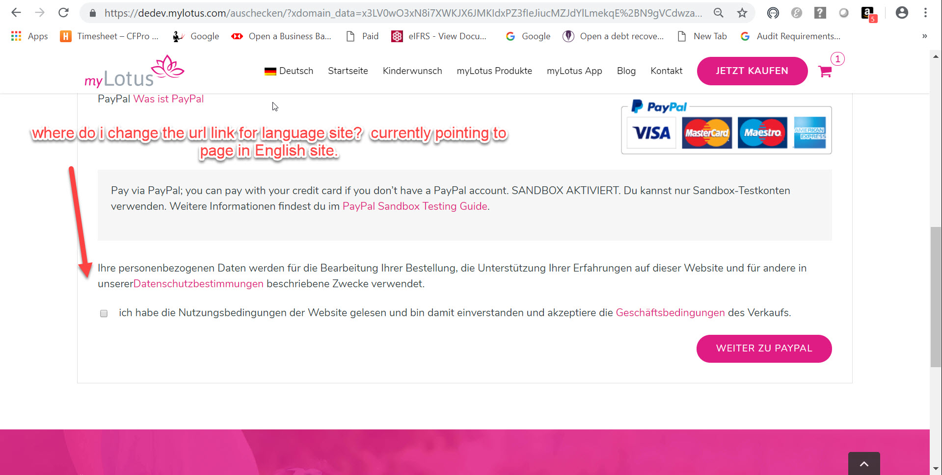 Checkout terms wrong url(German site 13mar19).jpg