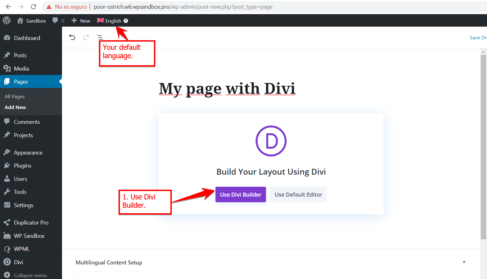 1-New_page_with_Divi.png