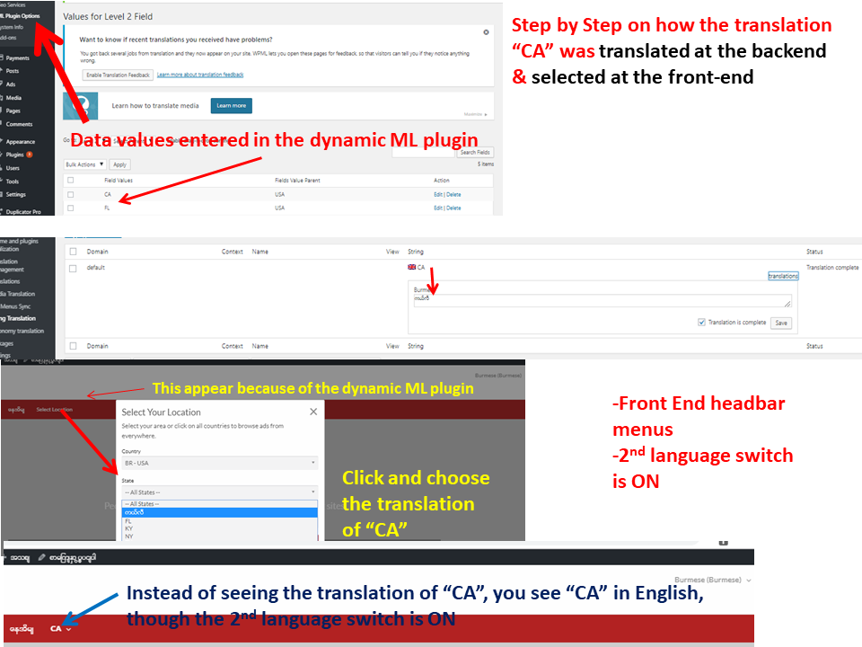 Translation of data value in the dynamic multi-field plugin1.png