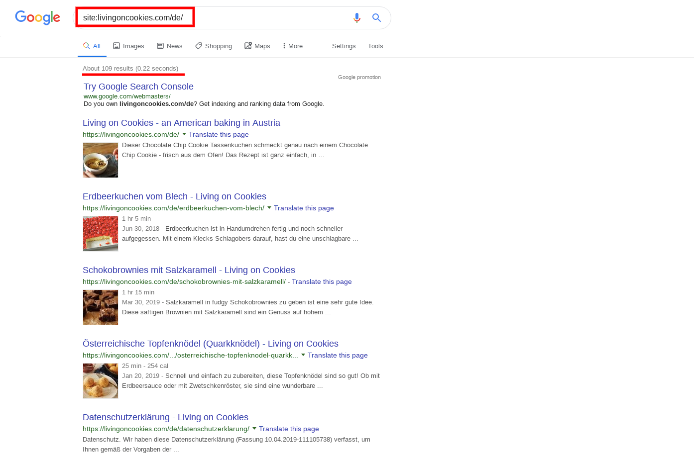 google-results.png