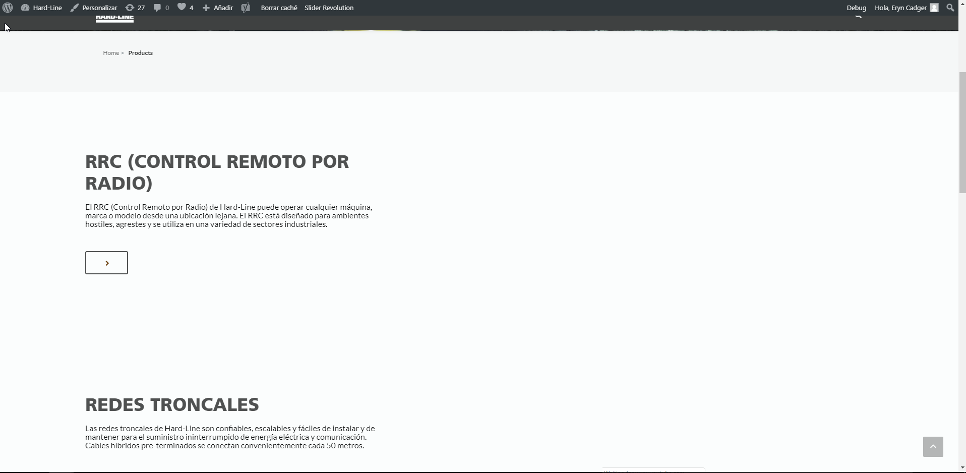 Spanish site - products page.png