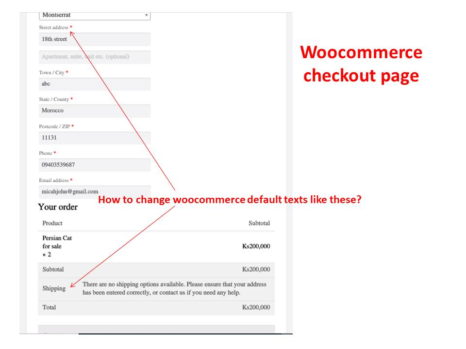 How to change woocommerce text-display.jpg